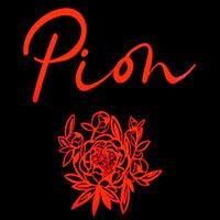 Pion - магазин женской одежды - Торговый Центр НЕМИГА 3, г. Минск